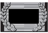 rs-silver-barebones-2010