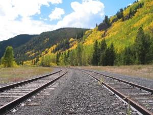 Tracks-Aspens