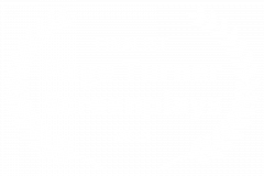 FINALIST-Page-Turner-Screenplays-2019_Black-1
