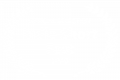 OFFICIAL-SELECTION-Indie-Short-Fest-2020