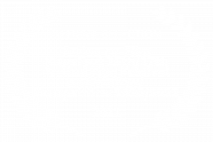 OFFICIAL-SELECTION-Action-on-Film-MegaFest-16th17th-Annual-Film-Festival-and-Writers-Competition-20202021-2021
