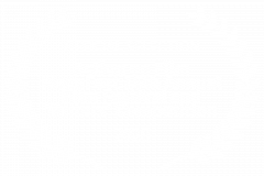 OFFICIAL-SELECTION-Action-on-Film-MegaFest-16th-Annual-Film-Festival-and-Writers-Competition-2020