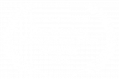 OFFICIAL-SELECTION-The-Monkey-Bread-Tree-Film-Awards-2020