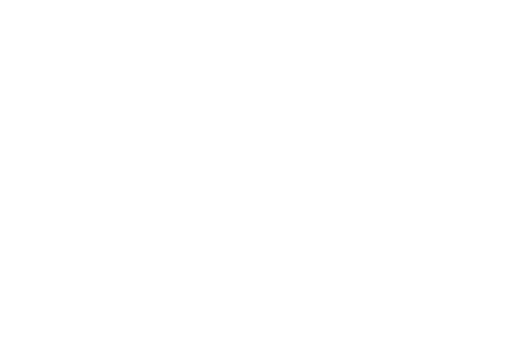 OFFICIAL-SELECTION-INTERNATIONAL-NEW-YORK-FILM-FESTIVAL-2020