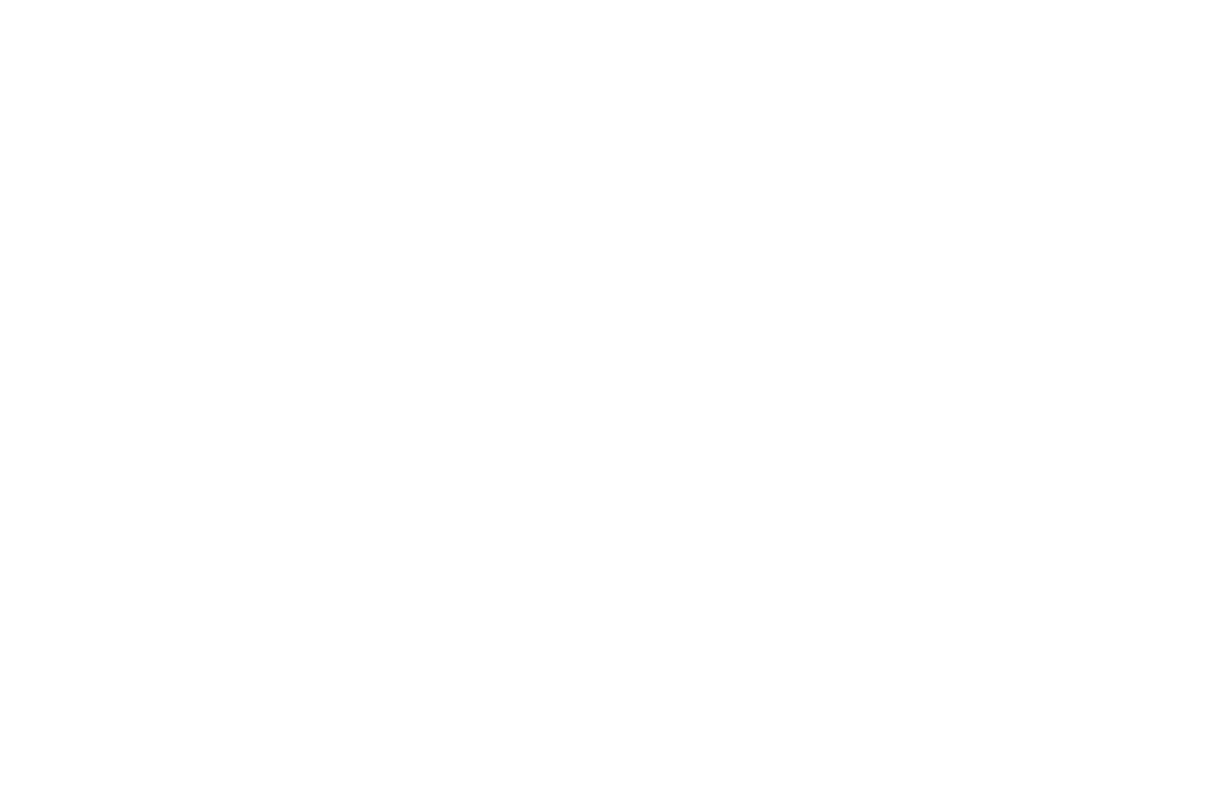 2nd PLACE - Spooky Movie DC International Film Festival Screenplay Awards