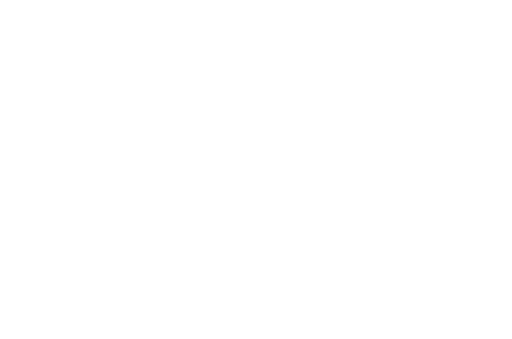 FINALIST - Bare Bones Intl Film Festival Screenplay Competition