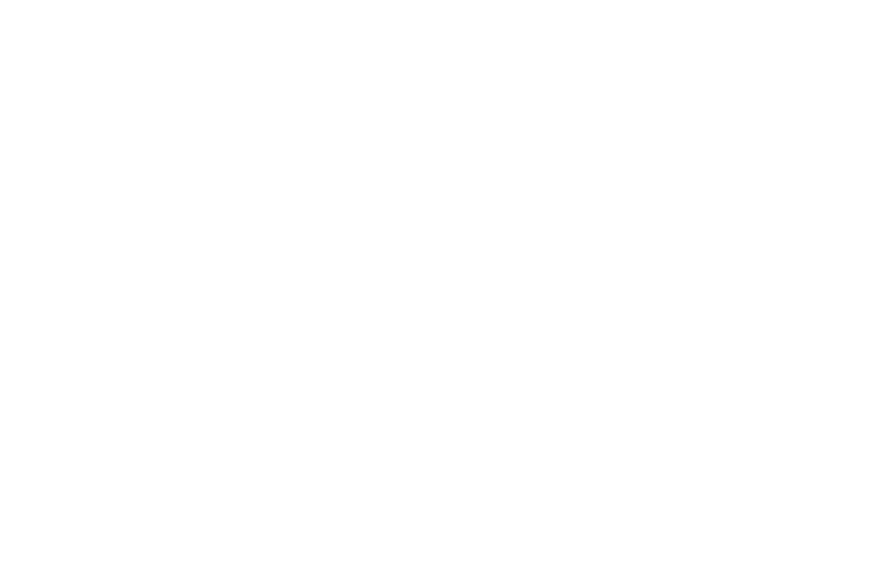 FINALIST - Charleston Intl Film Festival Screenplay Competition