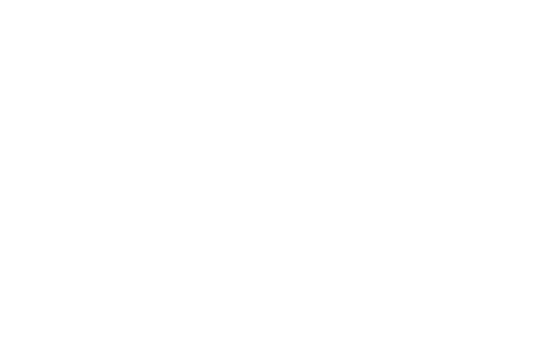 FINALIST - New York City International Screenplay Awards - 2019_Black