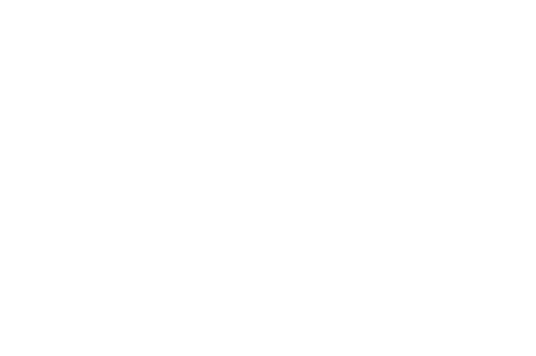 FINALIST - PAGE International Screenwriting Awards