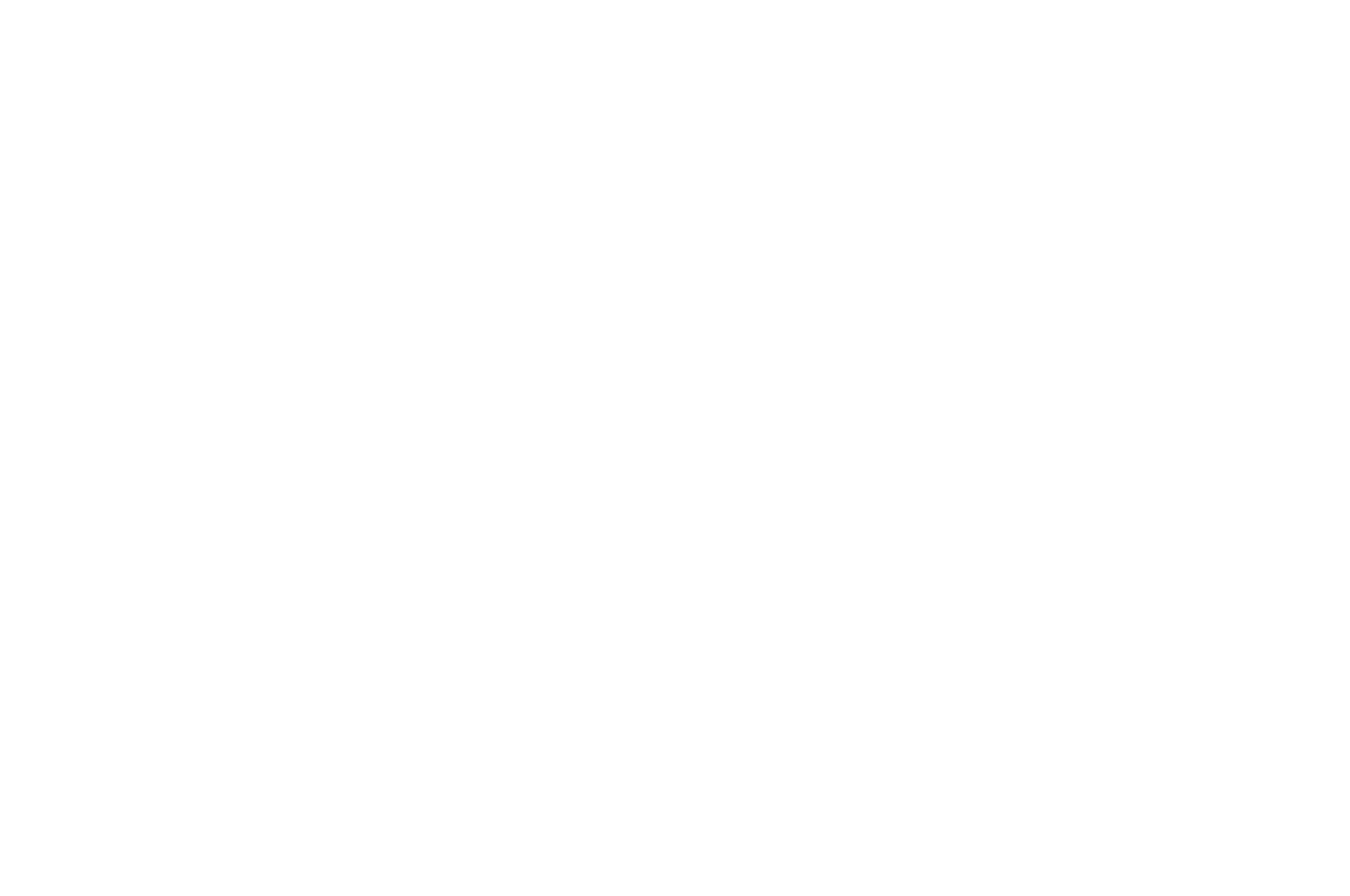 OFFICIAL SELECTION - AOF Festival Writers Awards