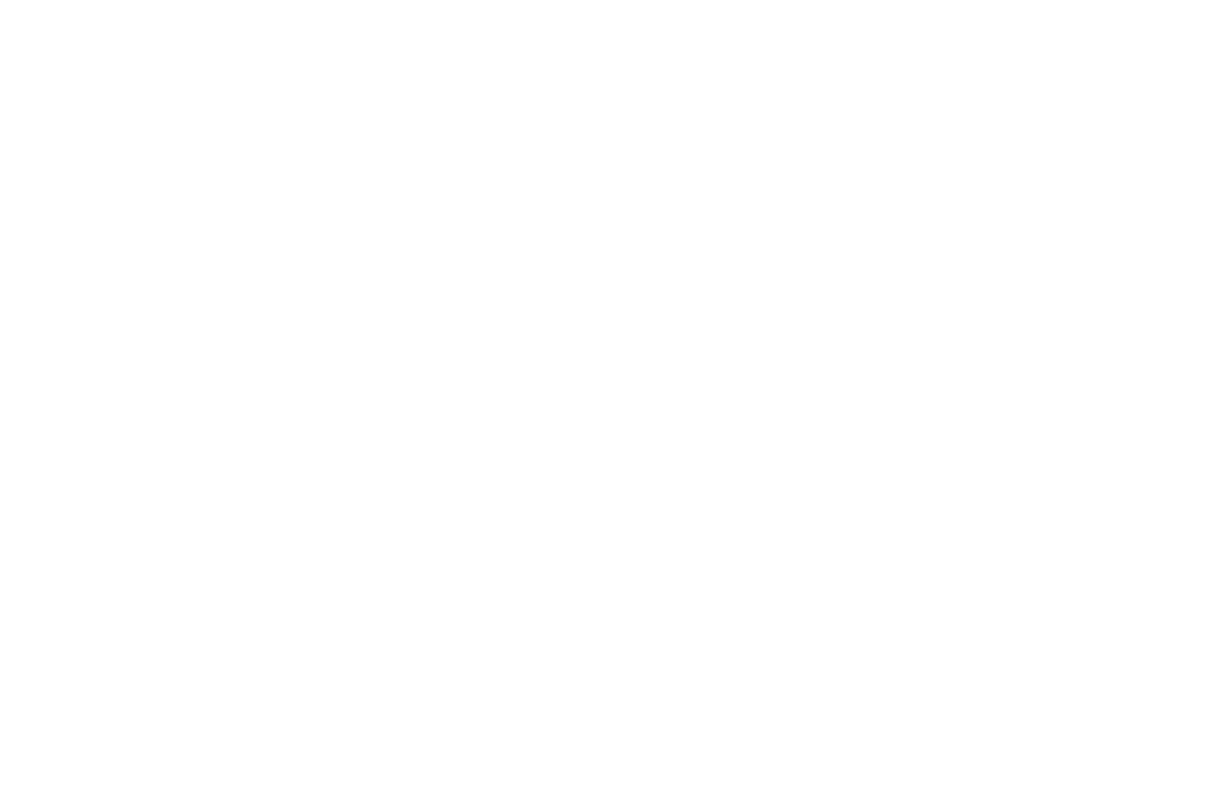 OFFICIAL SELECTION - Beverly Hills Film Festival - 2020