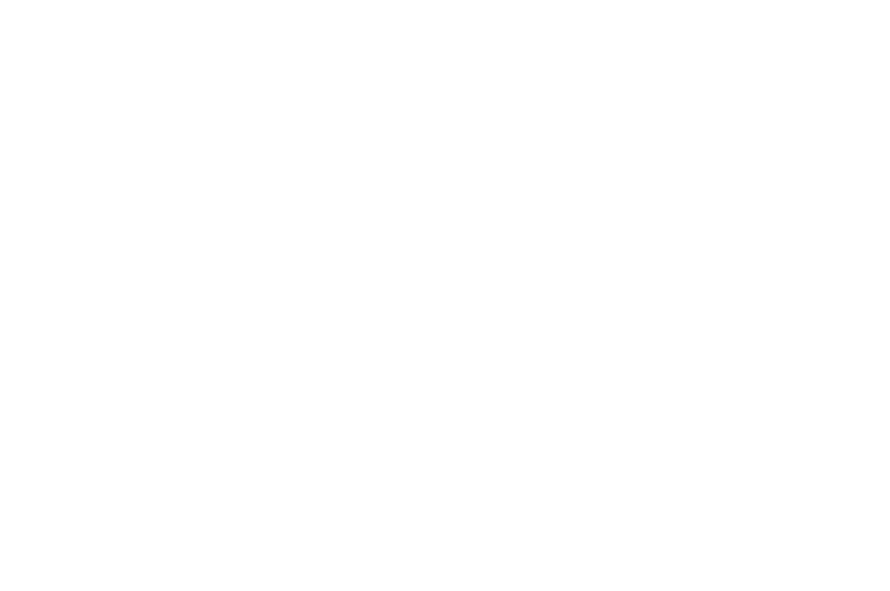 OFFICIAL SELECTION - Cinema City International Film Festival Screenplay Competition