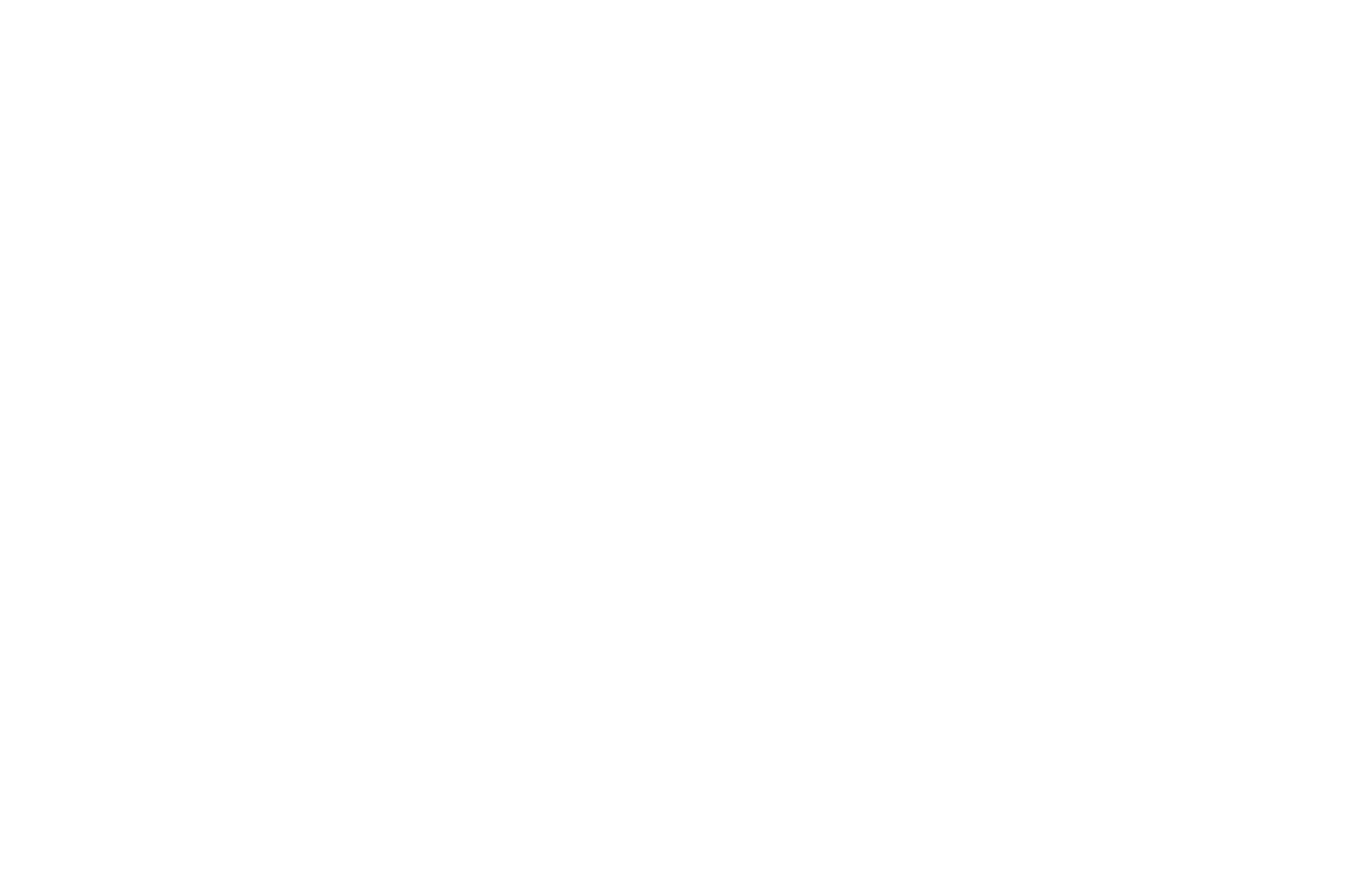 OFFICIAL SELECTION - Indie Fest USA Film Festival