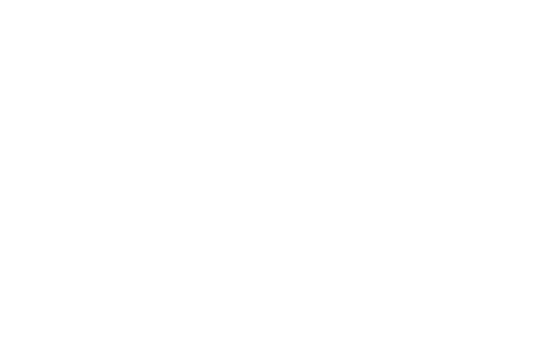 OFFICIAL SELECTION - LA Under the Stars Film Festival - 2020 - WHITE