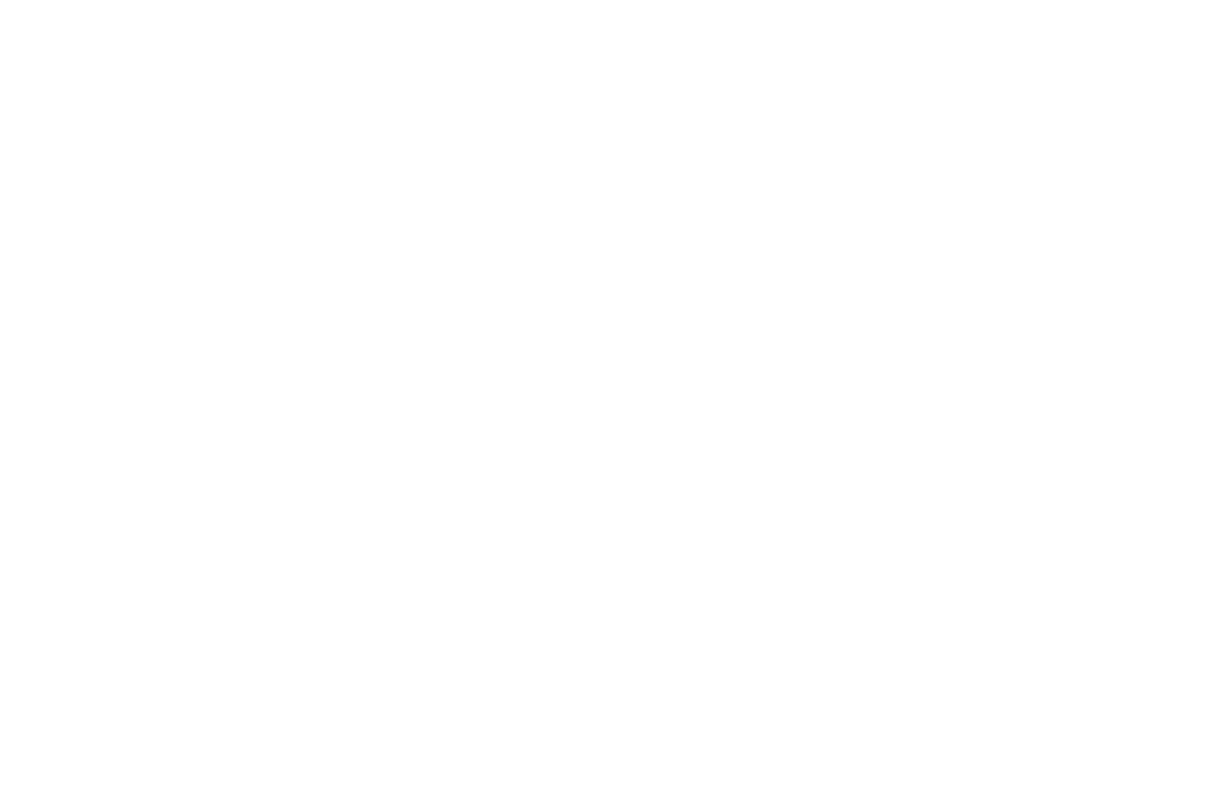OFFICIAL SELECTION - New Media Film Festival - 2020