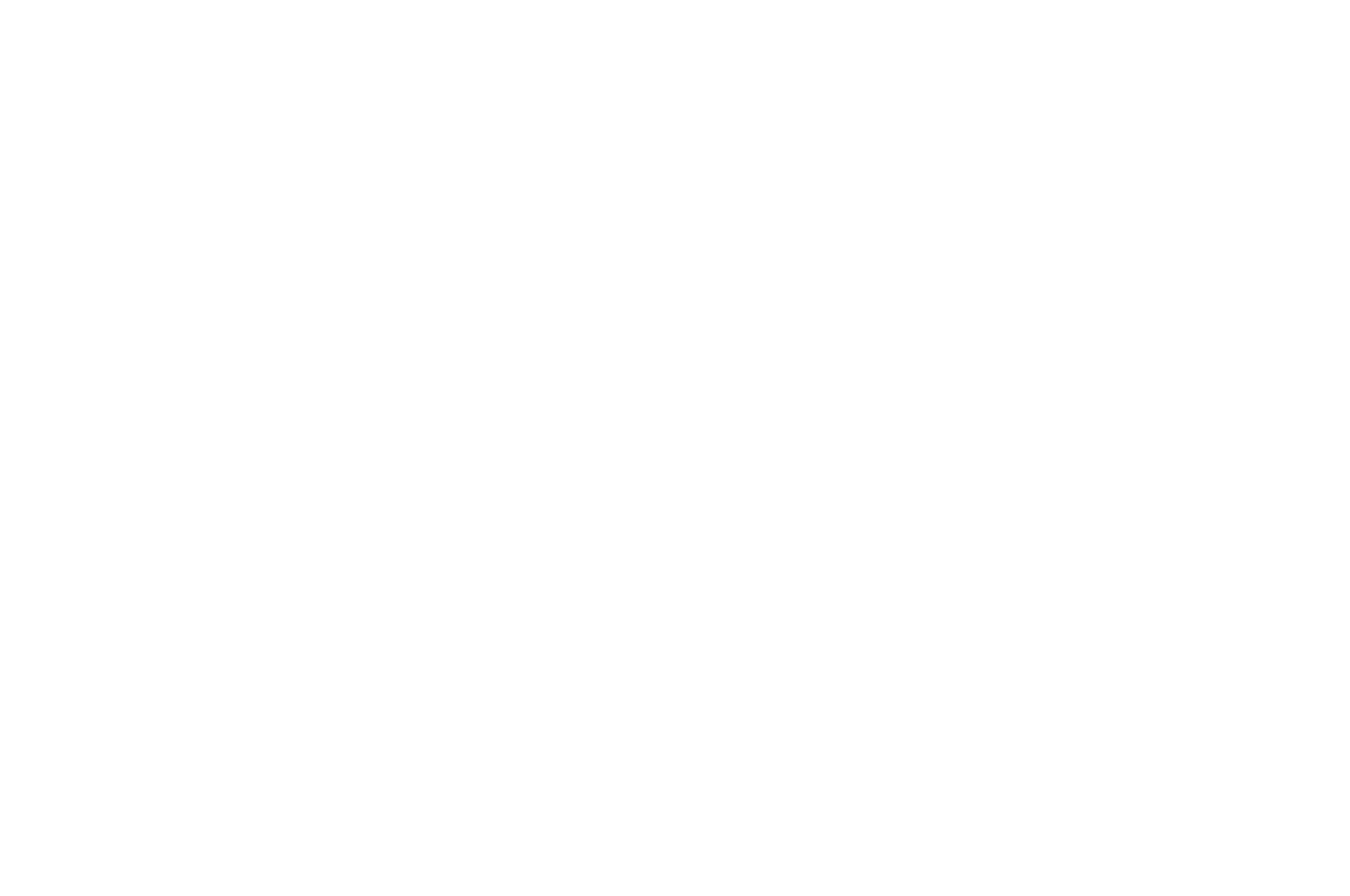 OFFICIAL SELECTION - Rome Independent Prisma Awards - Best Poster - 2020