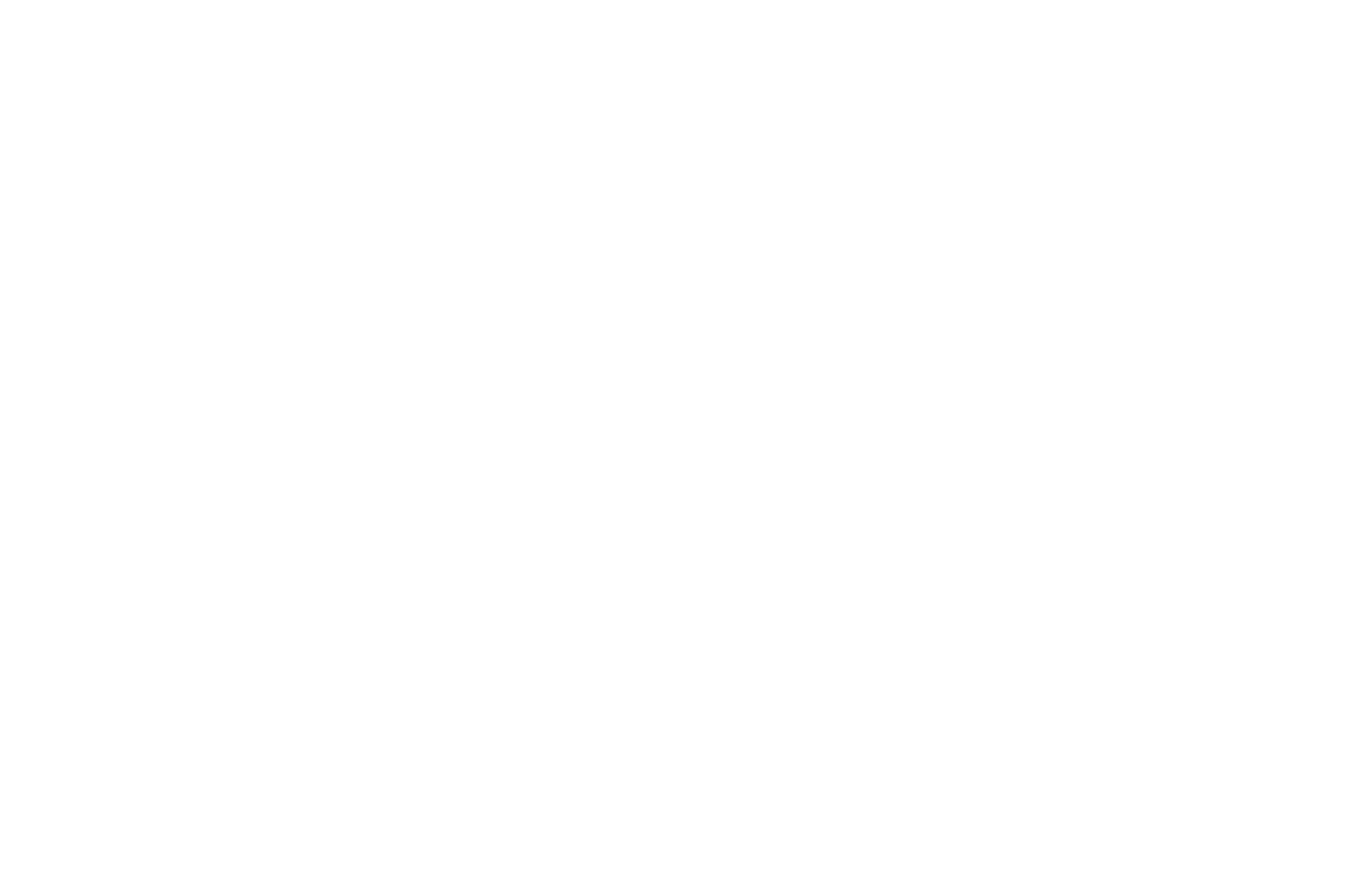 OFFICIAL SELECTION - SoCal Independent Film Festival