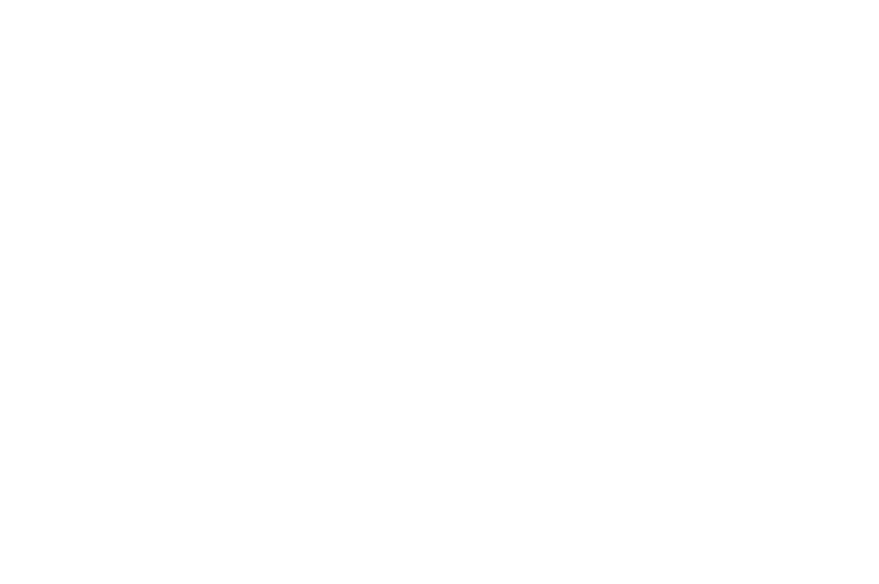OFFICIAL SELECTION - StoryPros International Screenplay Contest - 2019