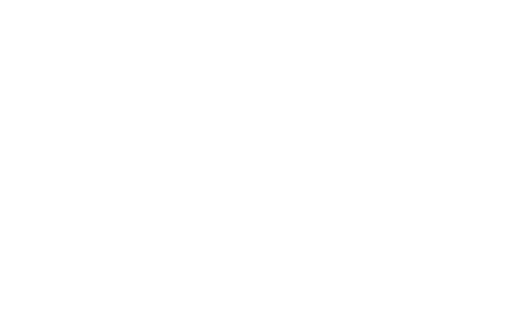 QUARTER-FINALIST - American Zeotrope Screenplay Contest