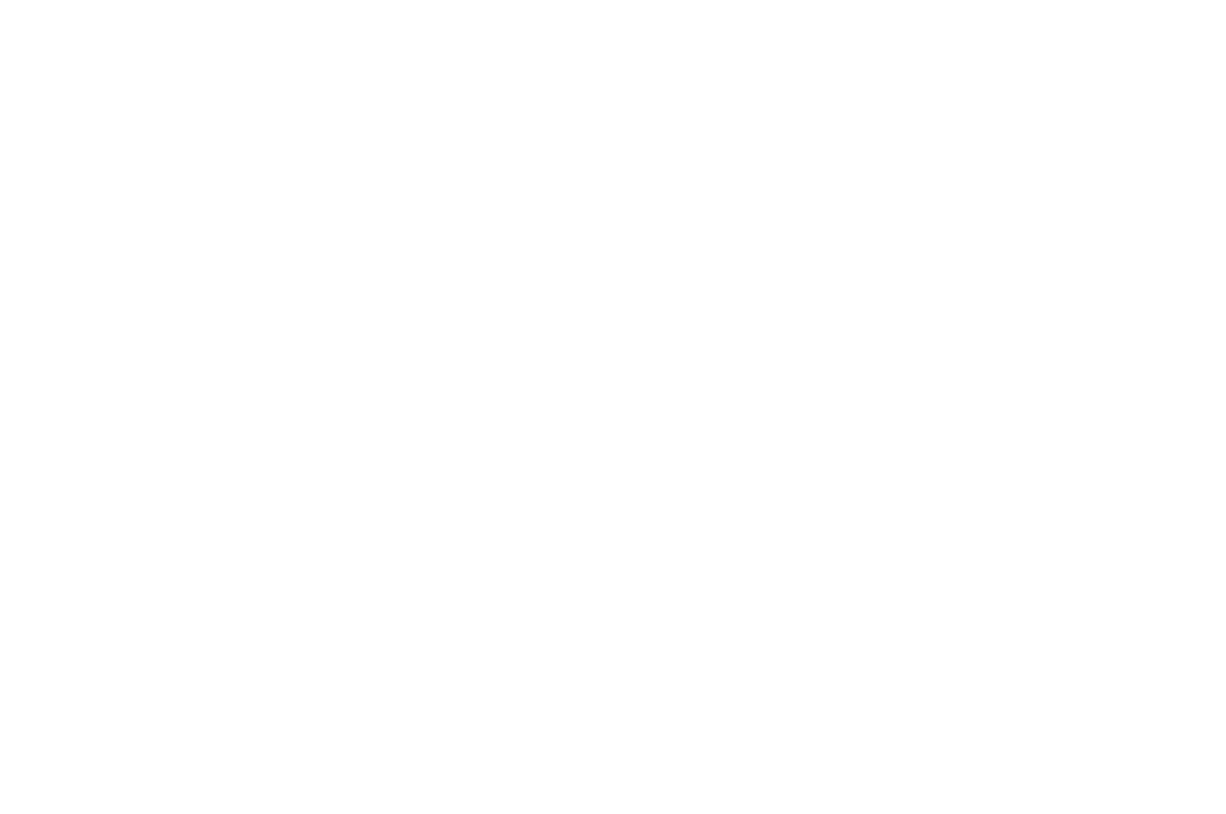 QUARTER-FINALIST - Scriptapalooza International Screenplay Competition