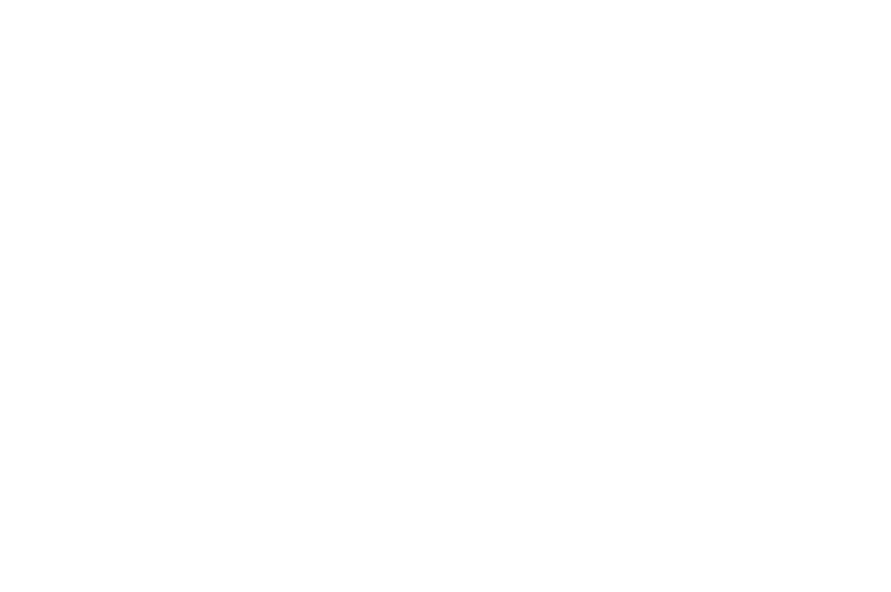 QUARTER-FINALIST - Slamdance Screenplay Competition