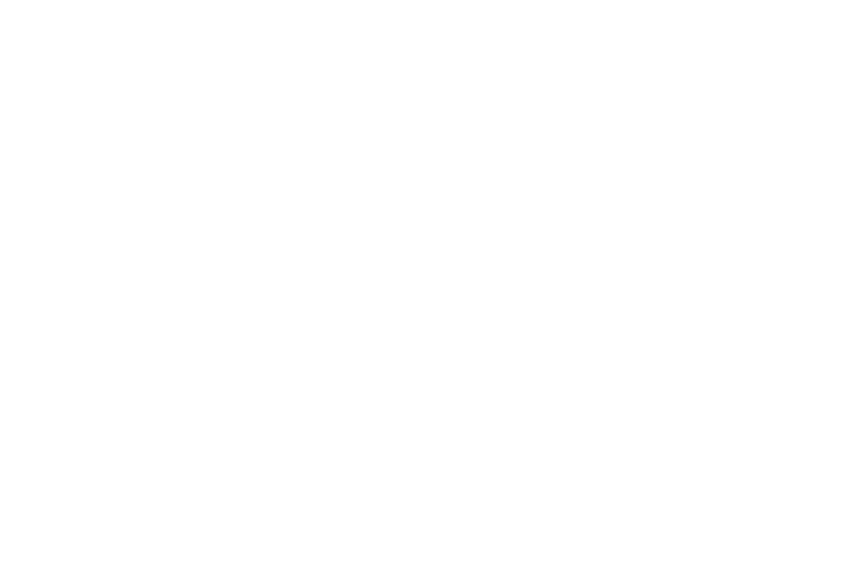 SEMI-FINALIST - Bare Bones Intl Film Festival Screenplay Competition