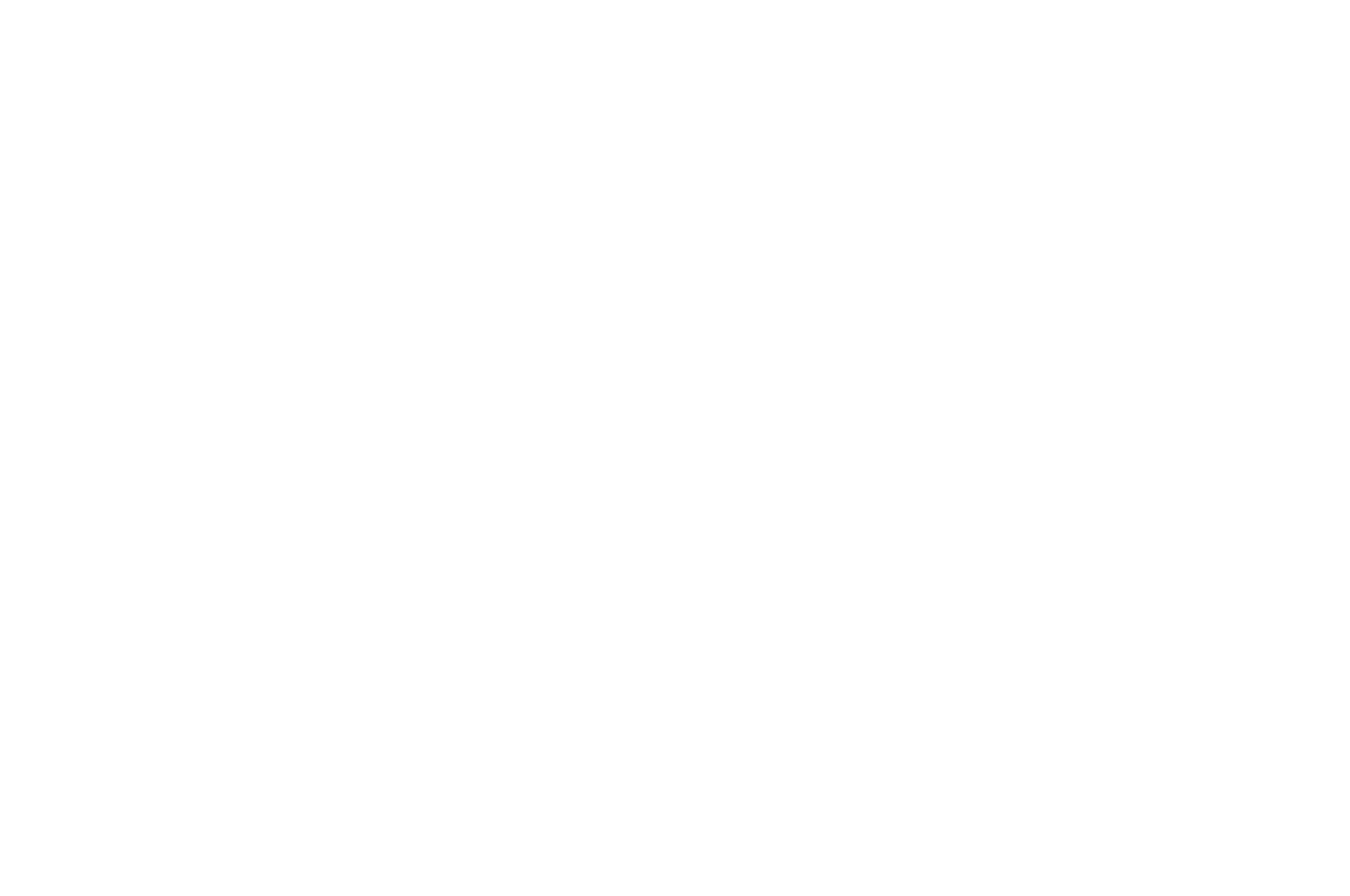 TOP 10 FINALIST - Cinema City International Film Festival Screenplay Competition
