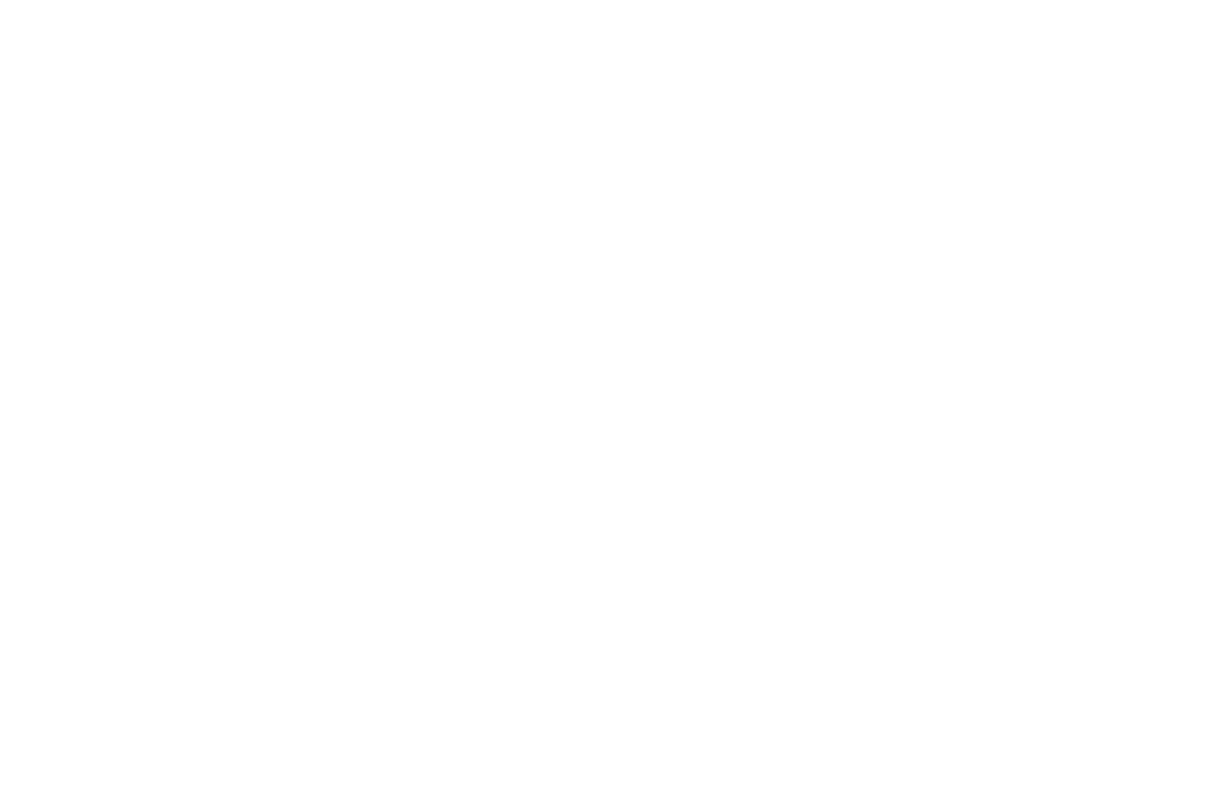 TOP 10 FINALIST - Waterfront Film Festival Screenplay Competition