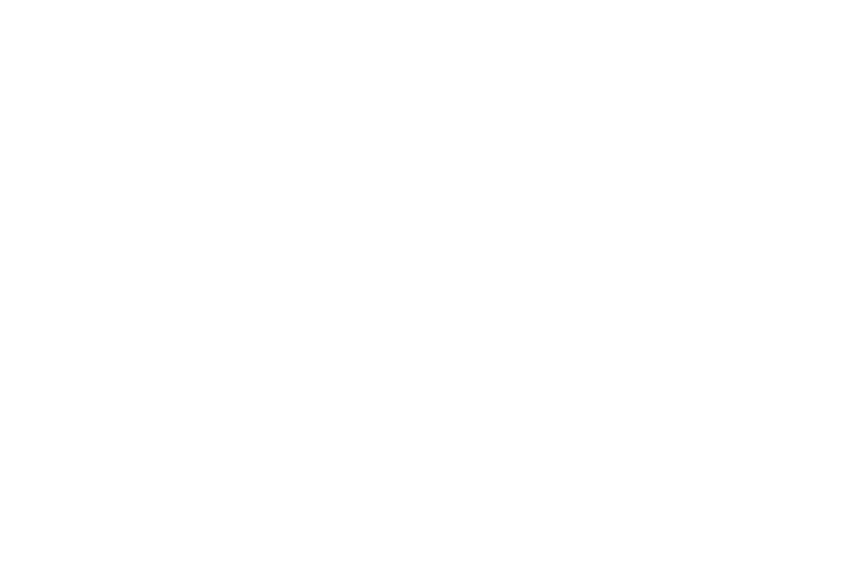 TOP 5 FINALIST - Bare Bones Intl Film Festival Screenplay Competition