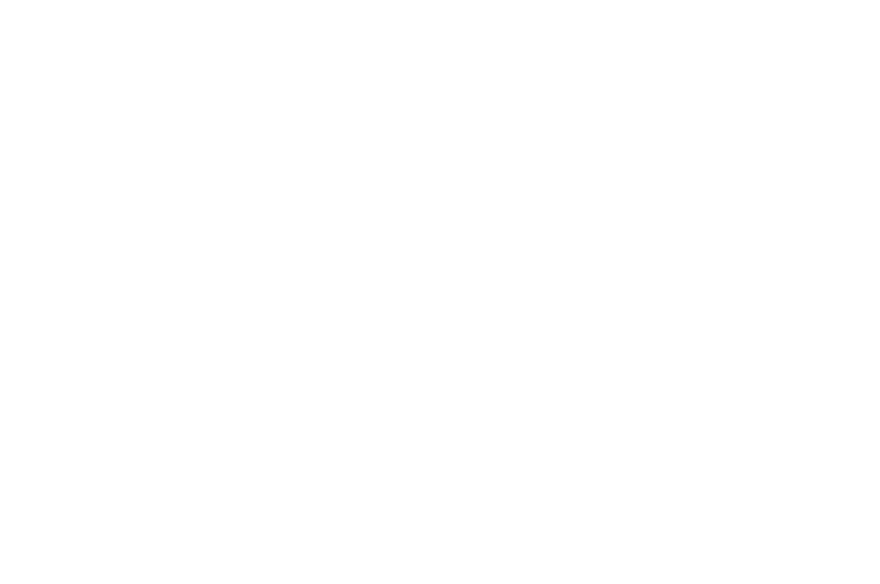 FINALIST - Cinema City International Film Festival Screenplay Competition
