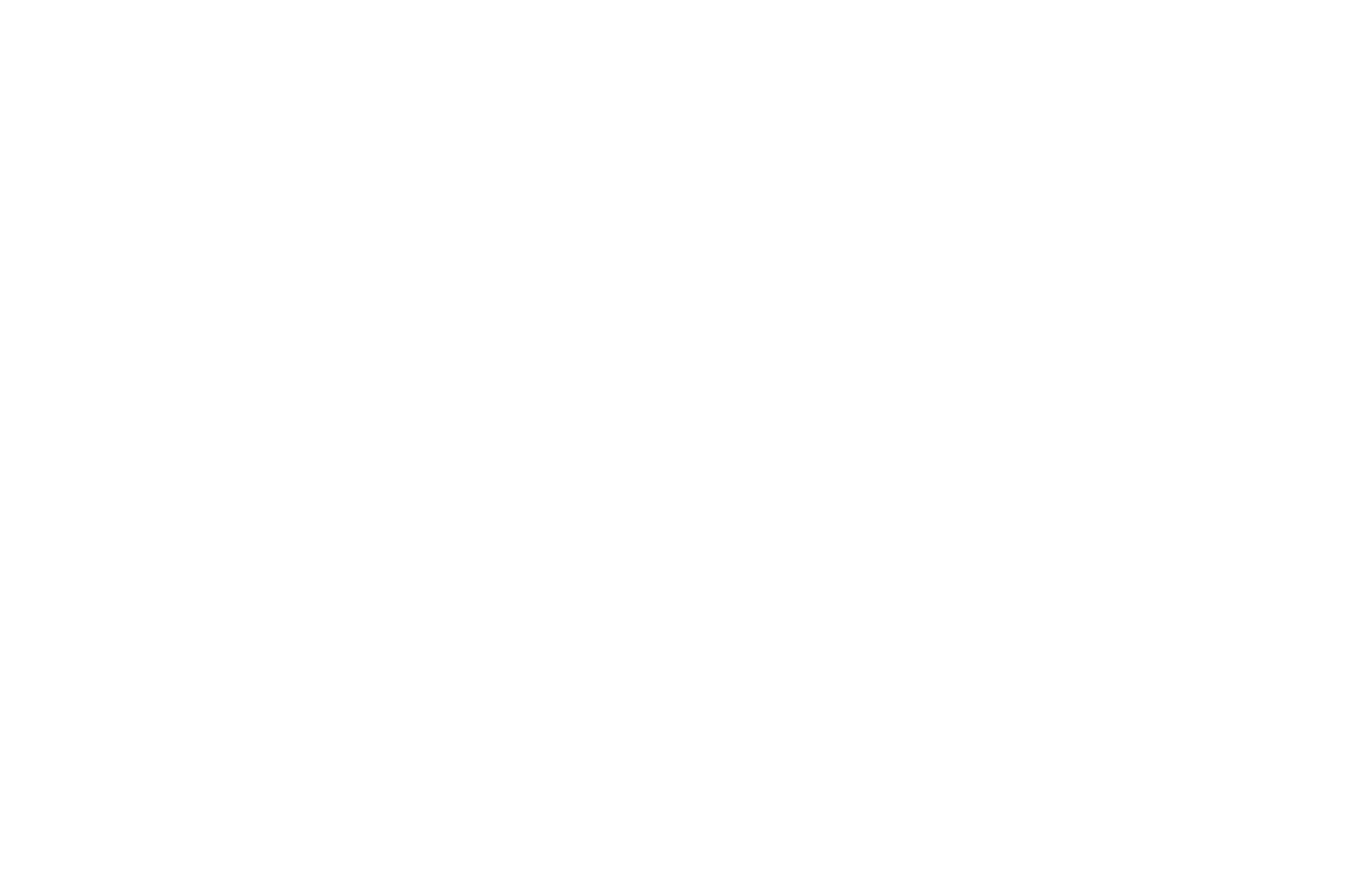 OFFICIAL SELECTION - FEEDBACK Under 5 Minute Film and Smartphone Festival - 2020