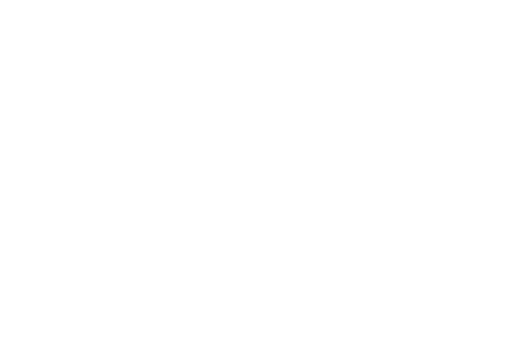 OFFICIAL SELECTION - Hang on to Your Shorts Film Festival - 2020