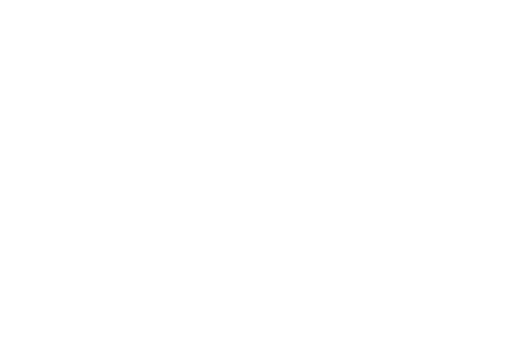 OFFICIAL SELECTION - Rhino Comedy Shorts Film Festival - 2020