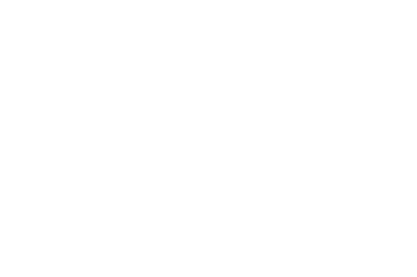 OFFICIAL SELECTION - Script Summit Screenplay Competition - 2020