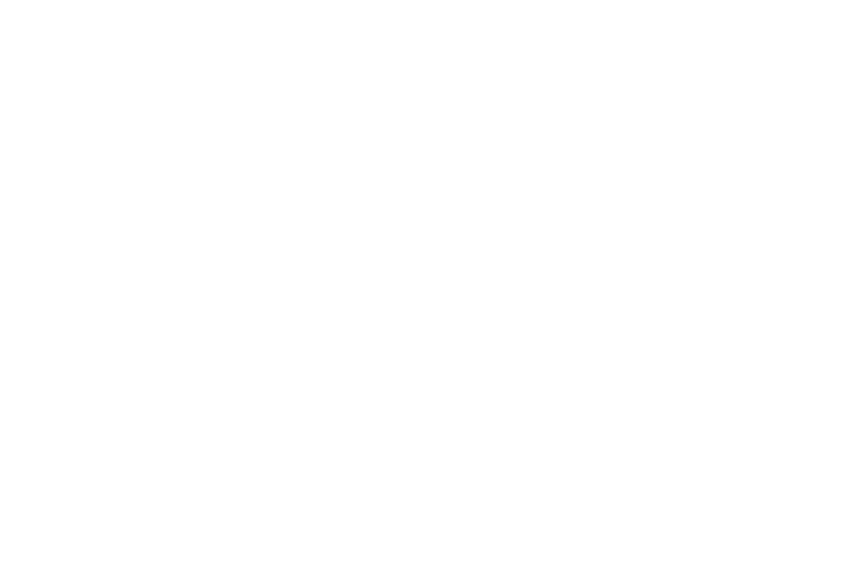 TOP 10 FINALIST - Bare Bones International Film Festival Screenplay Competition