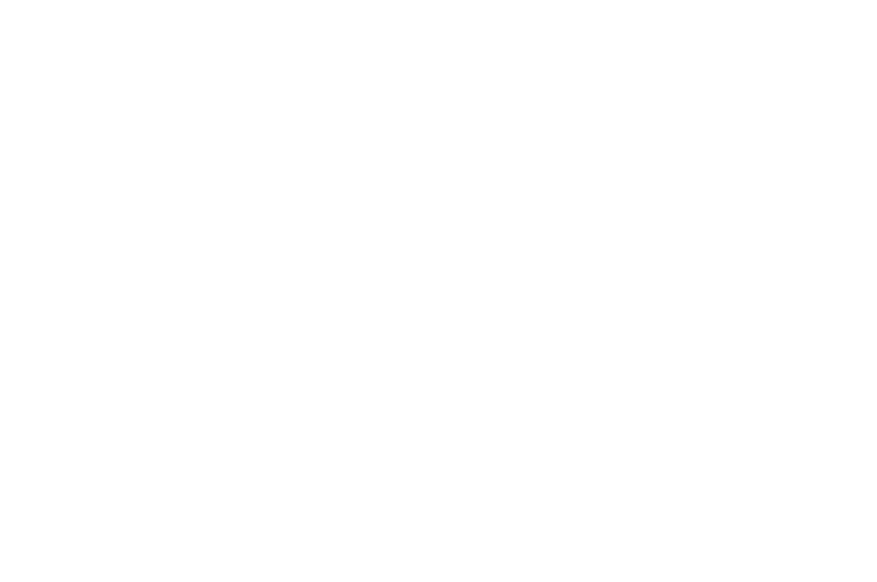 FINALIST - Page Turner Screenplays - 2020