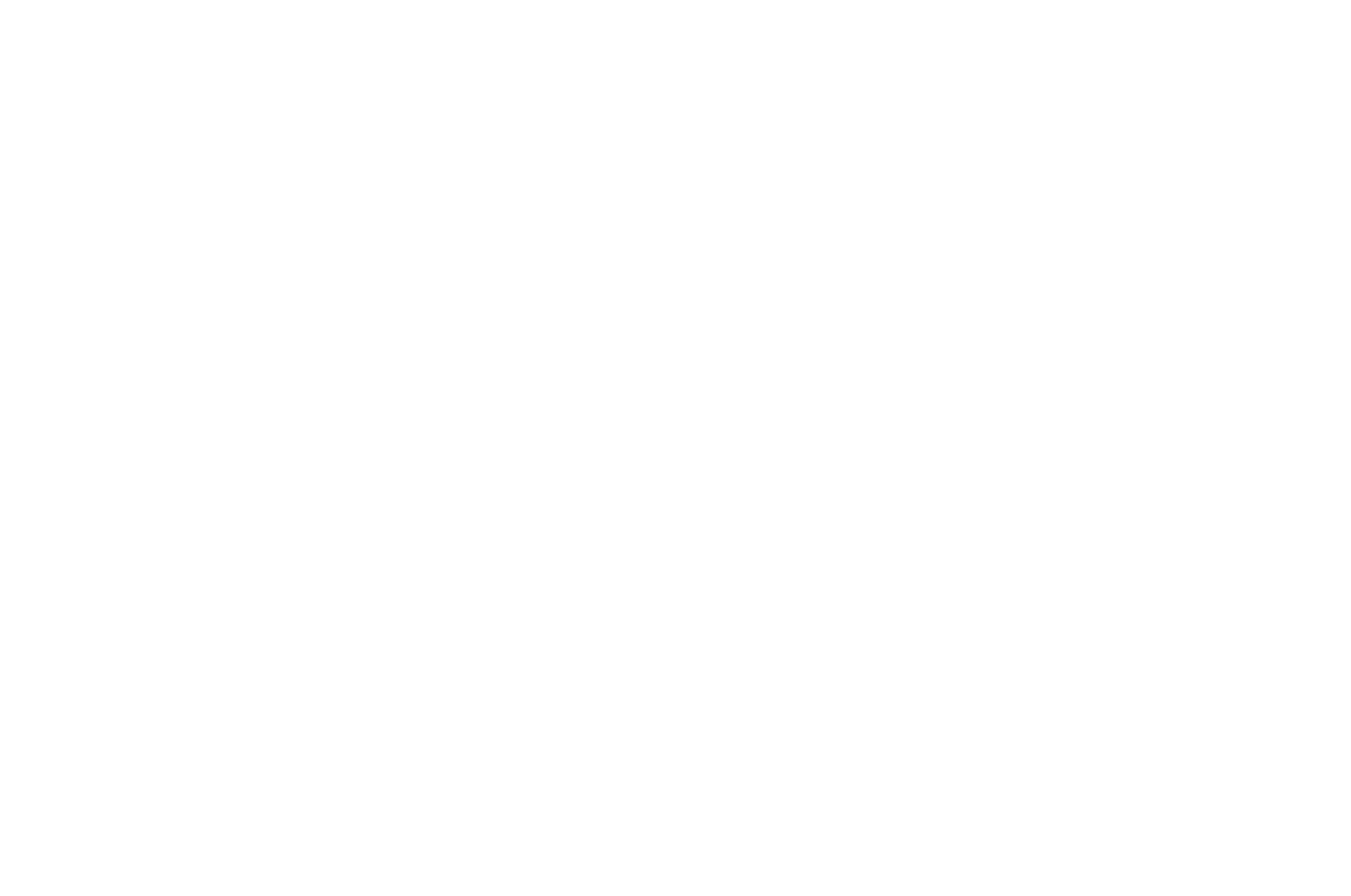 OFFICIAL SELECTION - Die Laughing Film Festival - 2020