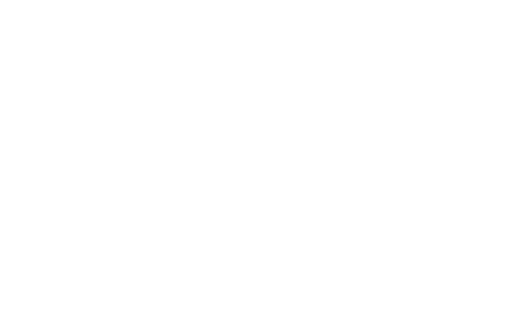OFFICIAL SELECTION - Indie Short Fest - 2020