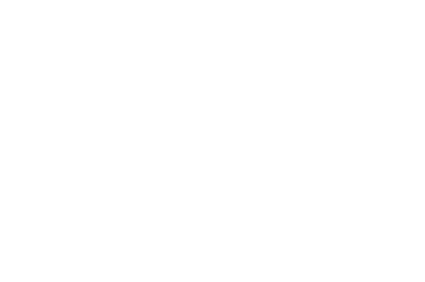OFFICIAL SELECTION - Los Angeles International Screenplay Awards - 2020