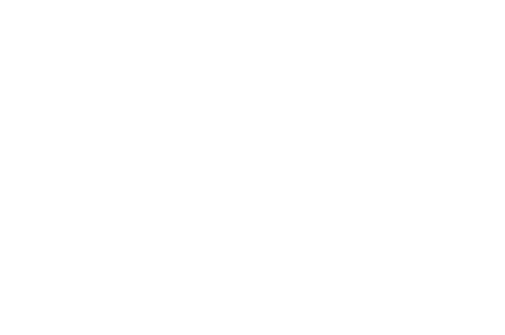OFFICIAL SELECTION - The Monkey Bread Tree Film Awards - 2020