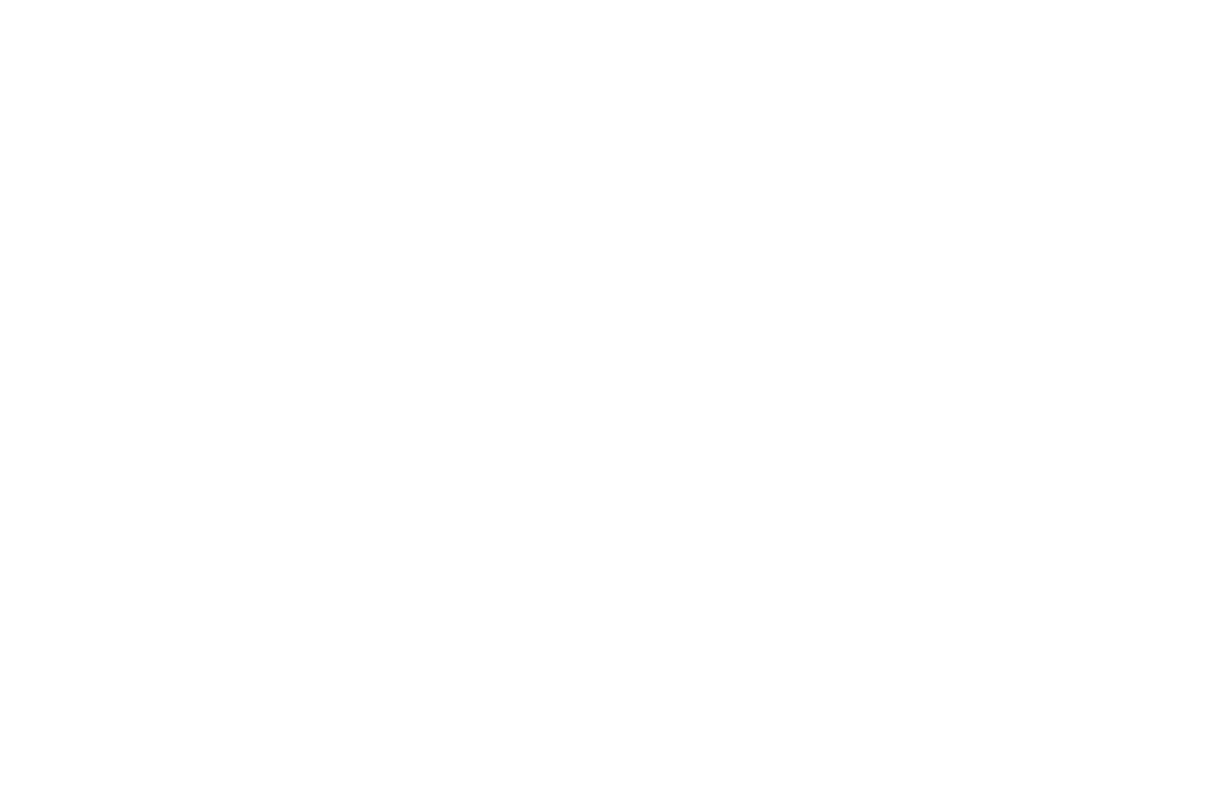 FINALIST - Lit Laughs International Comedy Film Festival - 2020