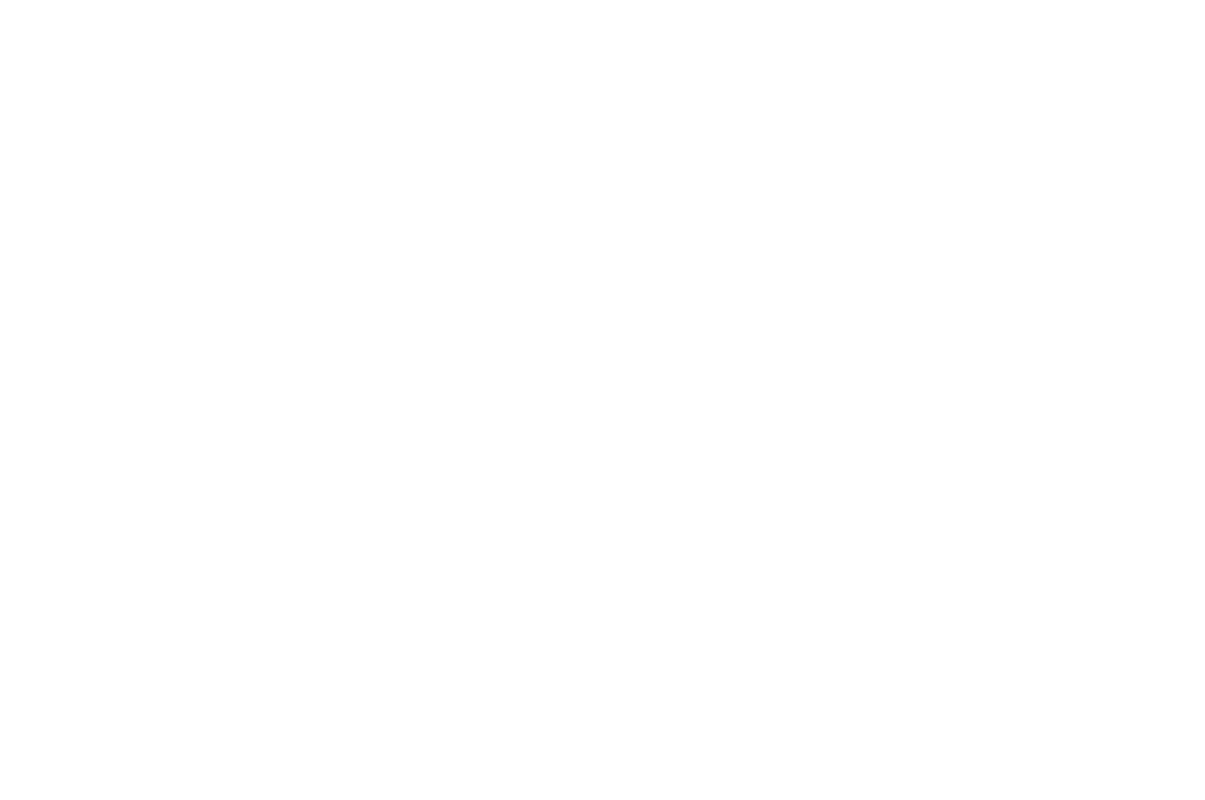 OFFICIAL SELECTION - Action on Film MegaFest 16th Annual Film Festival and Writers Competition - 2020