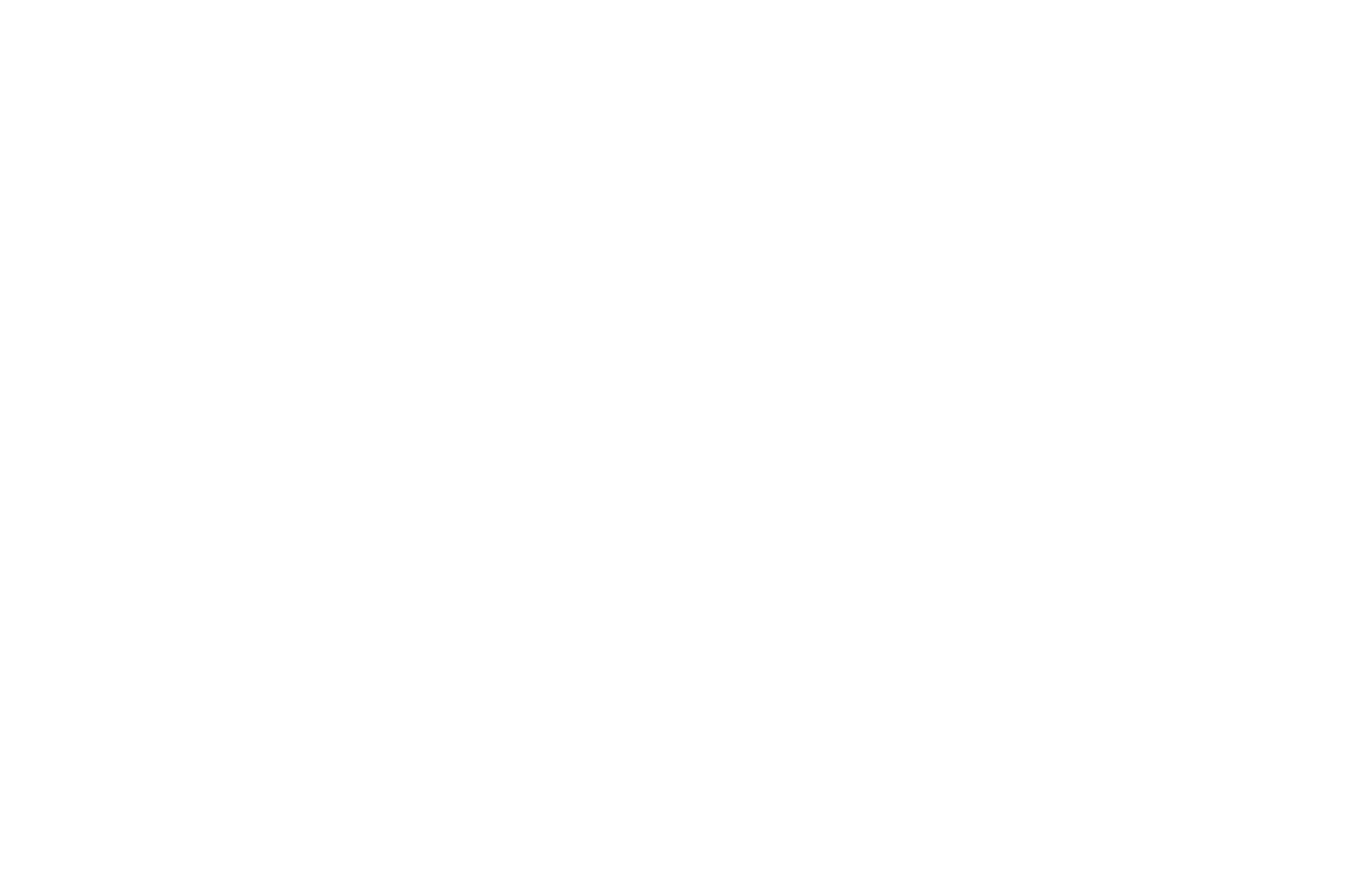 OFFICIAL SELECTION - Hollywood Dreams 4th Annual International Film Festival and Writers Competition - 2020