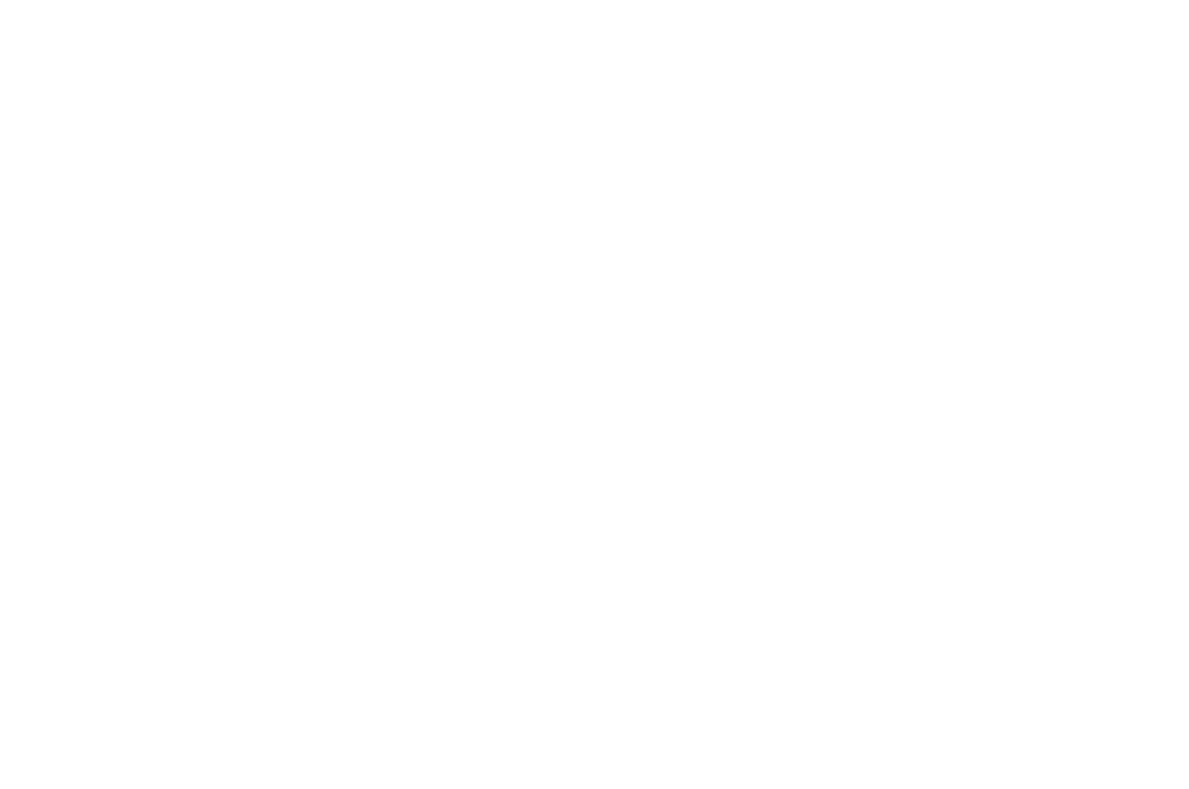 OFFICIAL SELECTION - Madras Independent Film Festival - 2020