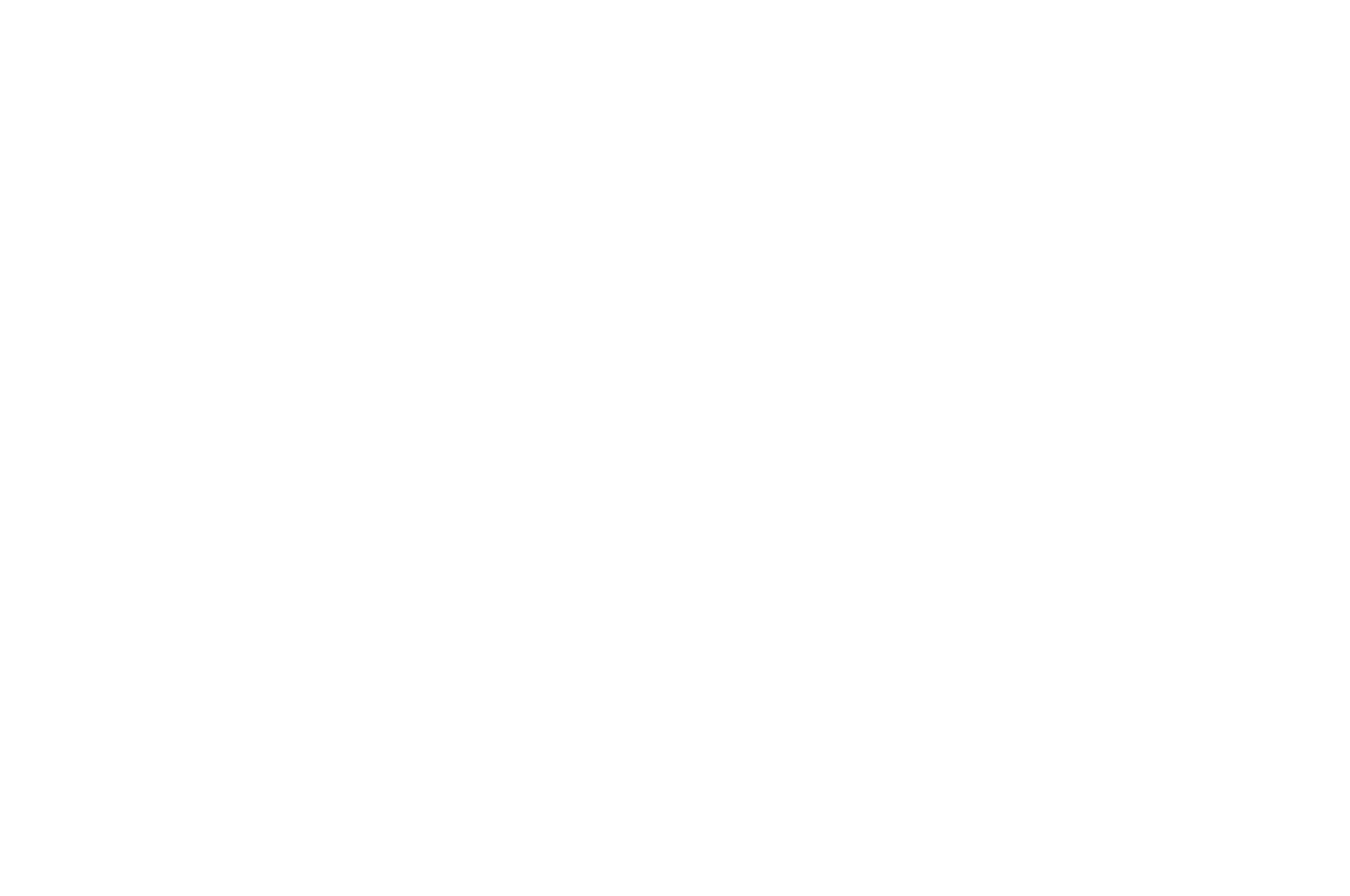 OFFICIAL SELECTION - Venice Shorts - 2020