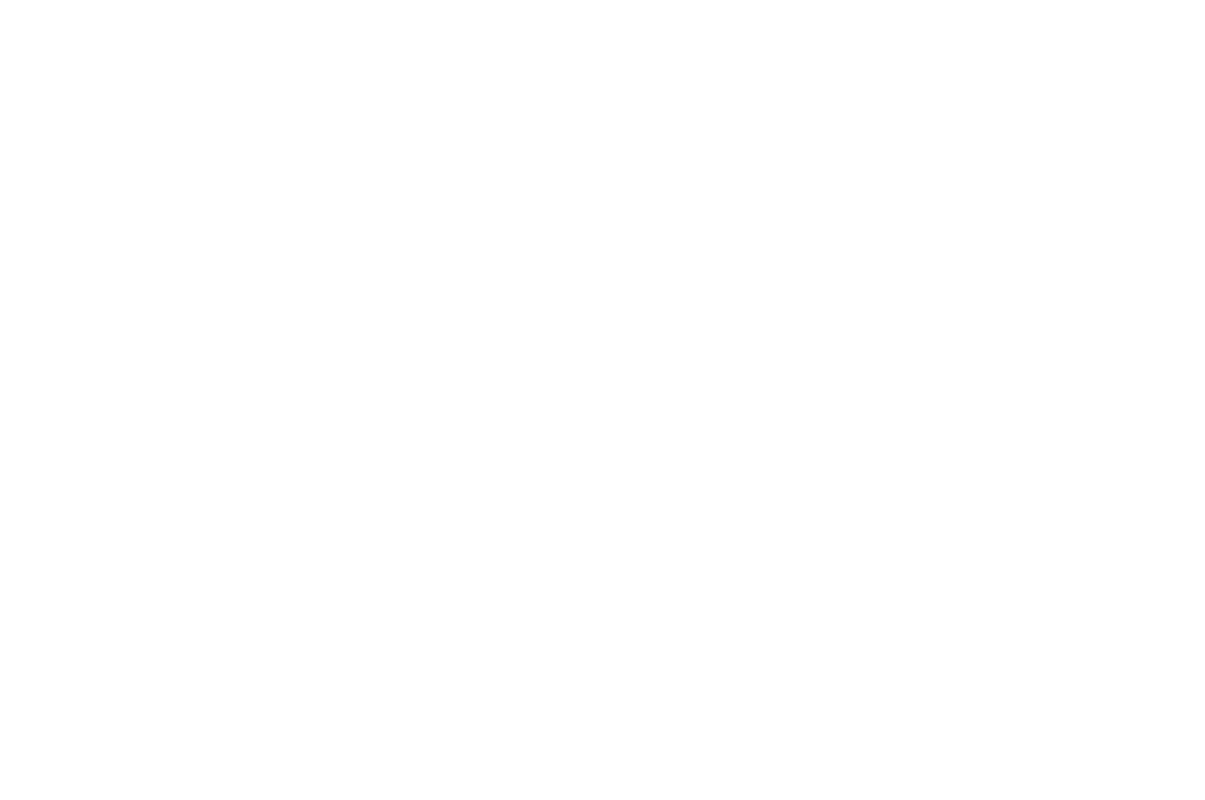 FINALIST - Hang on to Your Shorts Film Festival - 2020