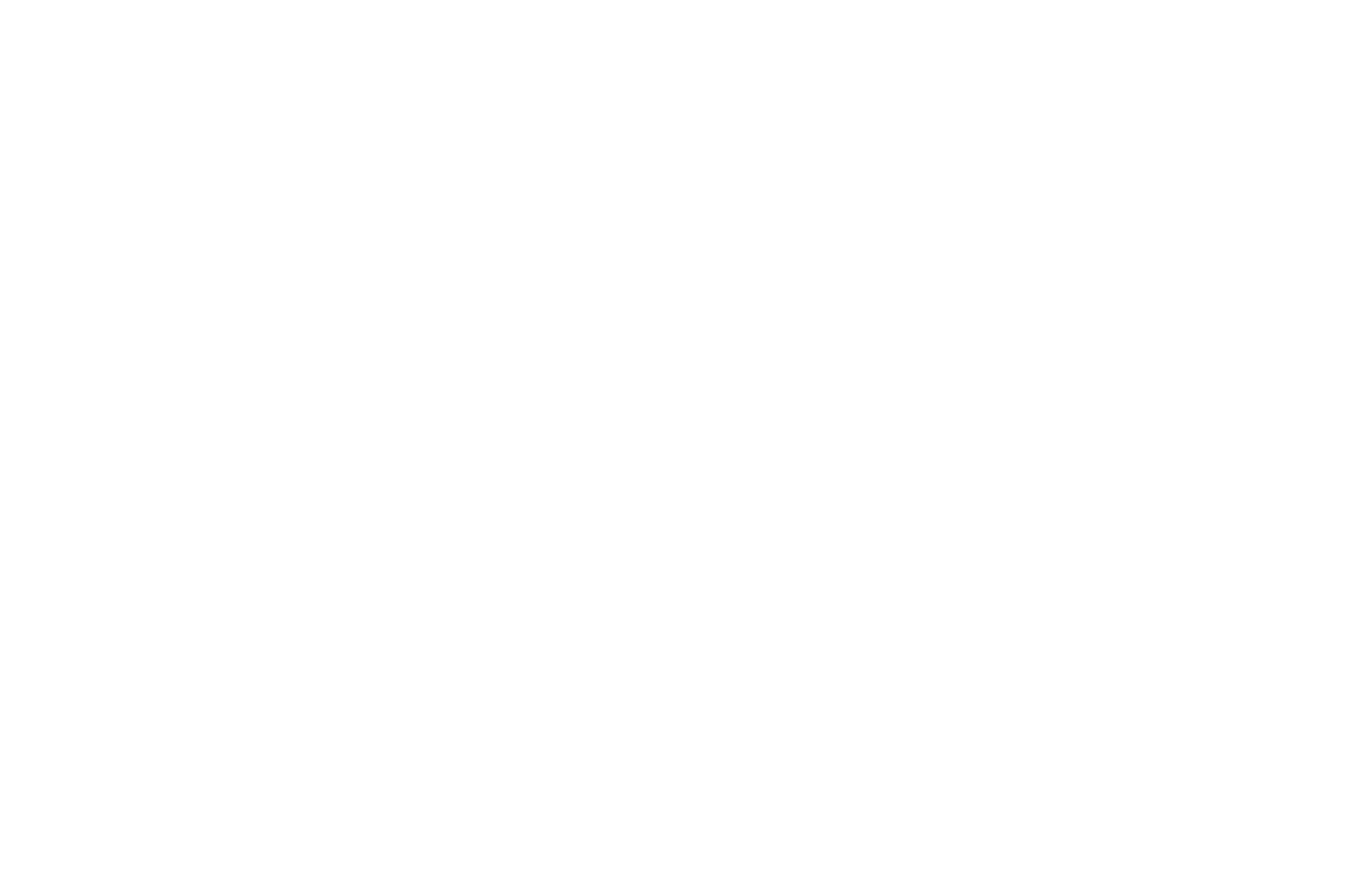 FINALIST - Kosice International Monthly Film Festival - 2020