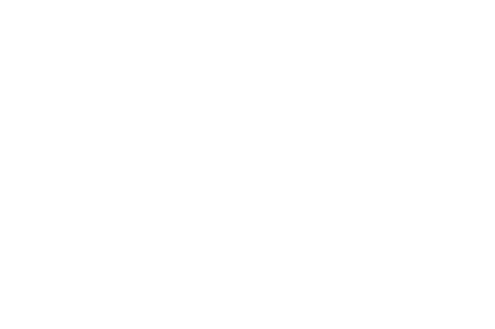 OFFICIAL SELECTION - Action on Film MegaFest 16th17th Annual Film Festival and Writers Competition 20202021 - 2021