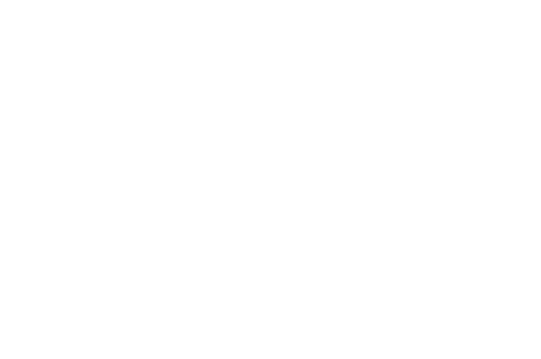 OFFICIAL SELECTION - Austin Micro Film Festival - 2020