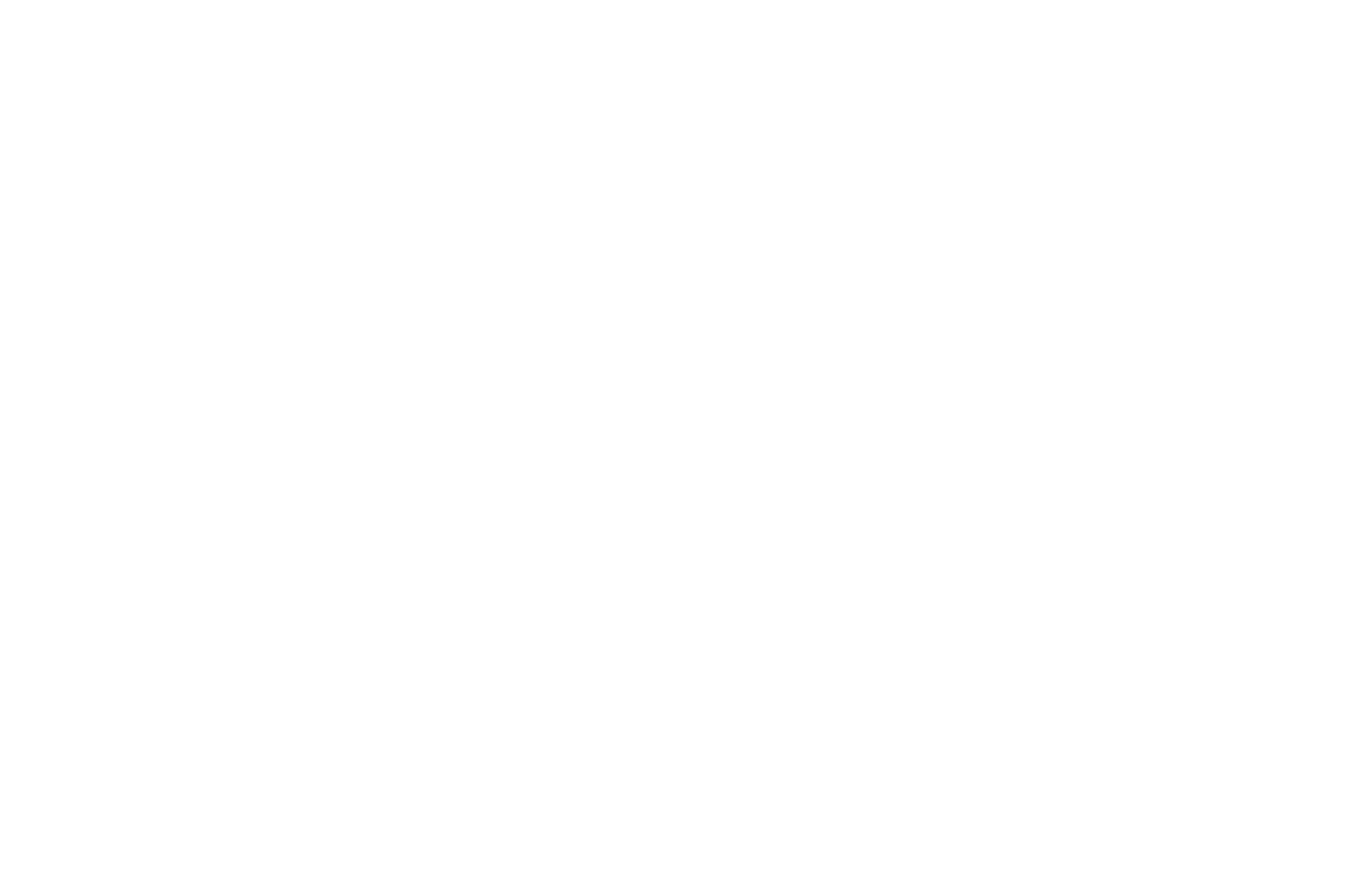 OFFICIAL SELECTION - Hollywood Dreams 4th5th Annual International Film Festival and Writers Competition 20202021 - 2021